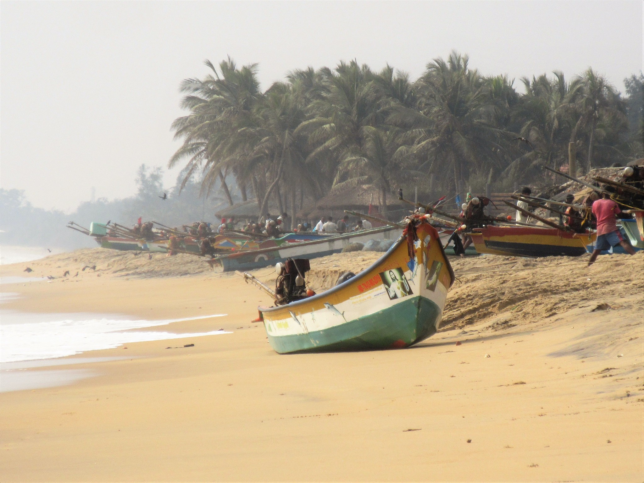 Double Check: Does India Have a Fisheries Ministry?