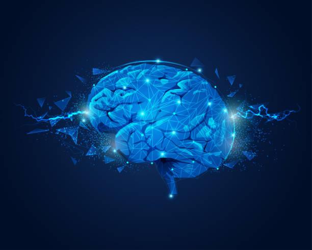 Pundit Brain